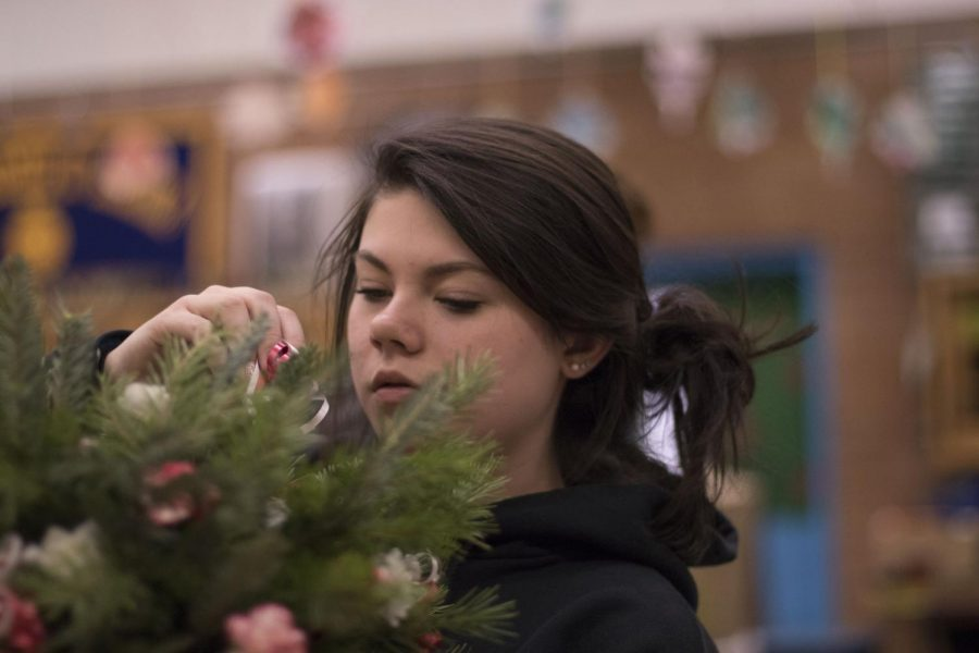 Horticulture+Holiday+Plants