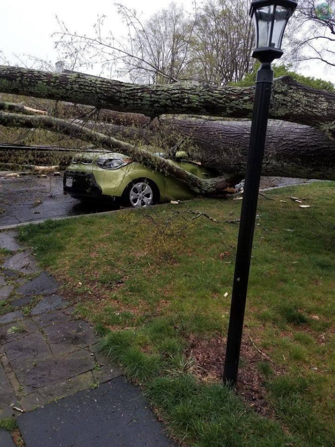 As+the+tornado+struck+Lynchburg+and+the+surrounding+areas%2C+trees+were+knocked+over+in+some+residential+neighborhoods.+Unfortunately%2C+Waterlick+Garage+suffered+damage+and+cannot+help+this+Kia+Soul.+Photo+courtesy+of+WSET-13+News.+