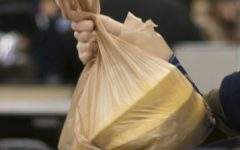 Plastic Bags: a Threat to the Environment