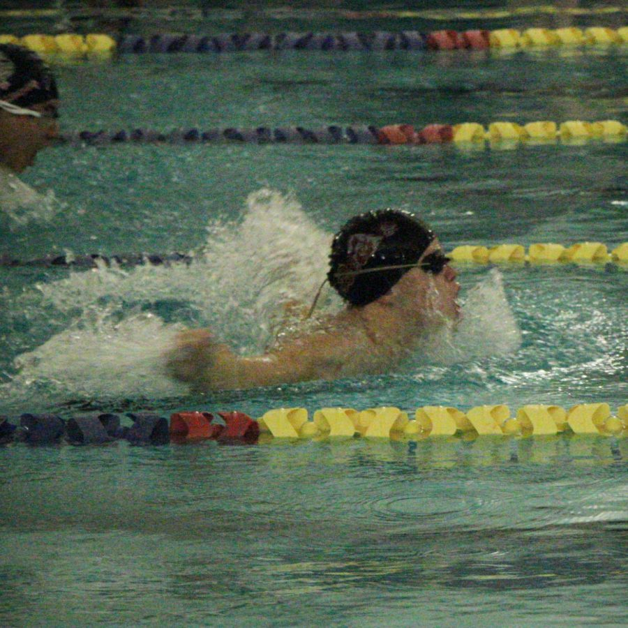 Swim Team Triumphs at States
